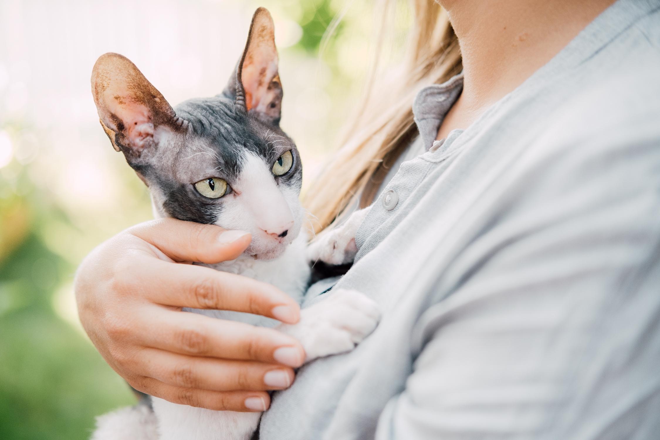 Vastuullisuutta ja kissatuotteita – Reetta Haapasalo aloitti Dagsmarkilla