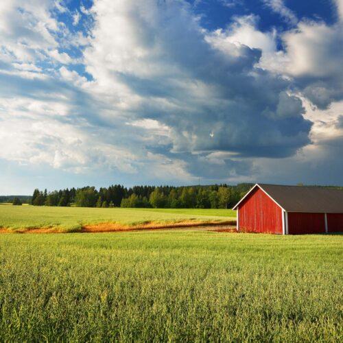 Raaka-aine artikkelin maalaismaisema, vihreä peltomaisema, punainen lato, sininen taivas, puhdas luonto